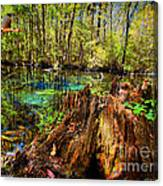 Indian Summer At Buford Spring Canvas Print