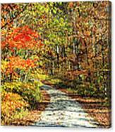 Indiana Back Road Canvas Print