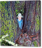 Indiana Jones In Armstrong Redwoods State Preserve Near Guerneville-ca Canvas Print