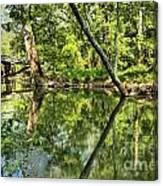 Indiana Reflections Canvas Print