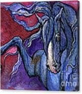 Indigo Horse 1 Canvas Print