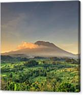 Indonesia, Bali, Forest And Gunung Canvas Print