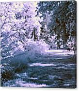 Infrared Morning Canvas Print