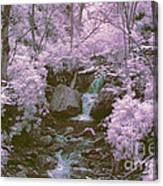 Infrared Mountain Stream Canvas Print