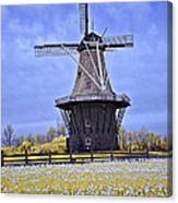 Infrared Photo Of The Dezwaan Dutch Windmill On Windmill Island In Holland Michigan Canvas Print