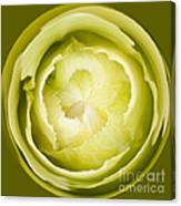 Inner Cabbage Orb Canvas Print