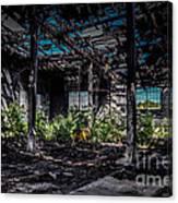 Inside An Abandon Building Canvas Print