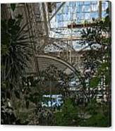 Inside Beautiful Old Greenhouse Canvas Print