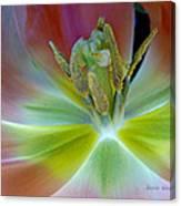 Inside The Tulip Canvas Print