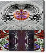 Inspiring Trust Spider - Spirit 2013 Canvas Print