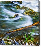 Intimate With River Canvas Print