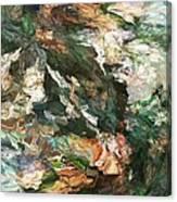 Into The Canyon Canvas Print
