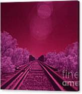 Into The Darkness Of Light Canvas Print