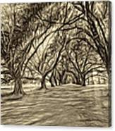 Into The Deep South - Paint 2 Sepia Canvas Print