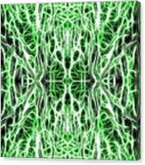 Into The Matrix Canvas Print