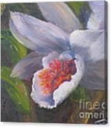 Inviting- Oil Canvas Print
