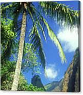 Io Valley Palm And Needle Maui Hawaii Canvas Print