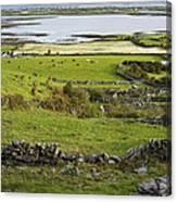 Ireland Farm Canvas Print