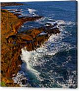 Ireland Rocky Coast Canvas Print