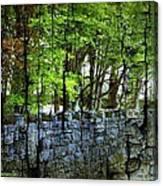 Ireland Stone Wall And Trees Canvas Print