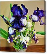 Iris #16 Canvas Print