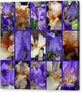 Iris Collage Canvas Print