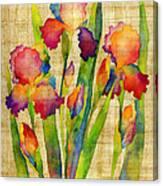 Iris Elegance On Yellow Canvas Print