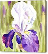 Iris Flower Purple Dance Canvas Print