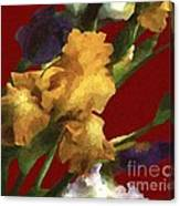 Iris In The Rough Canvas Print