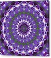 Iris Kaleidoscope  Canvas Print