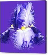 Iris Passementerie Canvas Print