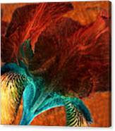 Iris Sonata 3 Canvas Print