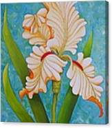 Iris the Beauty of One Canvas Print