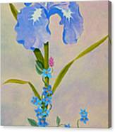 Iris With Forget Me Nots Canvas Print