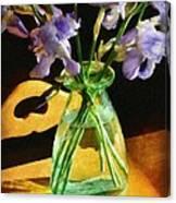 Irises In Morning Light Canvas Print