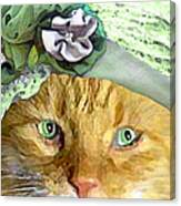Irish Cat Canvas Print