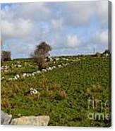 Irish Farms And Fields Canvas Print