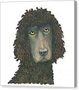 Irish Water Spaniel Canvas Print