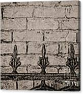 Iron Fence - New Orleans Canvas Print