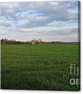Great Friends Iron Horse Wheat Field And Silos Canvas Print