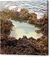 Ironshore Tidewater Pool Canvas Print