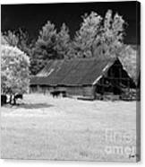 Irving College Barn Canvas Print