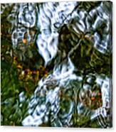 Isinglass Canvas Print