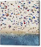 Island Beach State Park Canvas Print