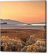 Island Daybreak Canvas Print