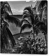 Island Girls Canvas Print