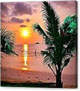 Island Glow Canvas Print