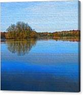 Island In The Pond Canvas Print
