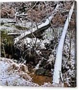 Ist Snow Of The Season Canvas Print