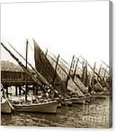 Italian Fishing Boats Fishermen's Wharf San Francisco Circa 1903 Canvas Print
